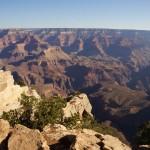 Didi verschluckt vom Grand Canyon